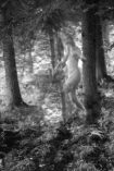 L'éther et le chaos - Les deux aspects de la redite, photographie