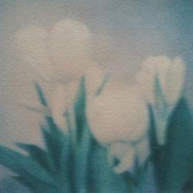 Cette lumière, transfert d'émulsion Polaroid sur papier coton, 43 x 33 cm